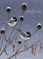 Winter Pair - Black Capped Chickadees