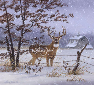 Evening Snowfall-Whitetail
