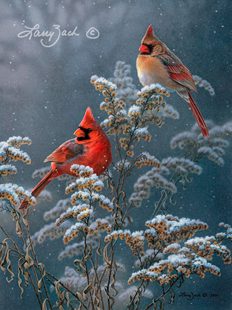 Winter Cardinals on Goldenrod