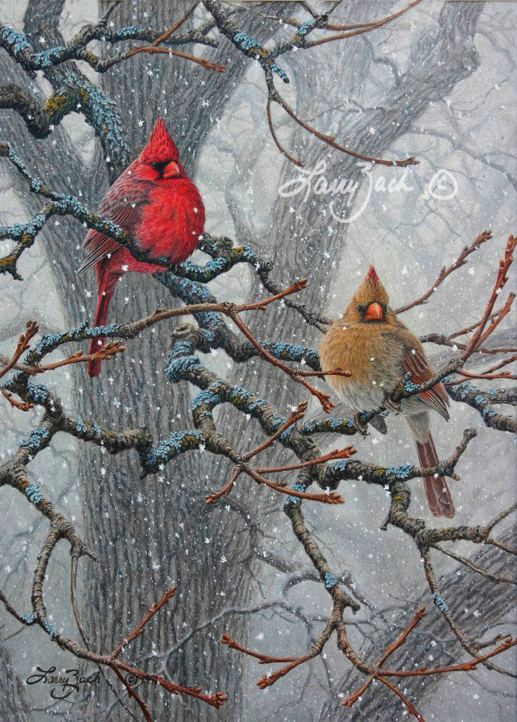 Winter Pair Cardinal
