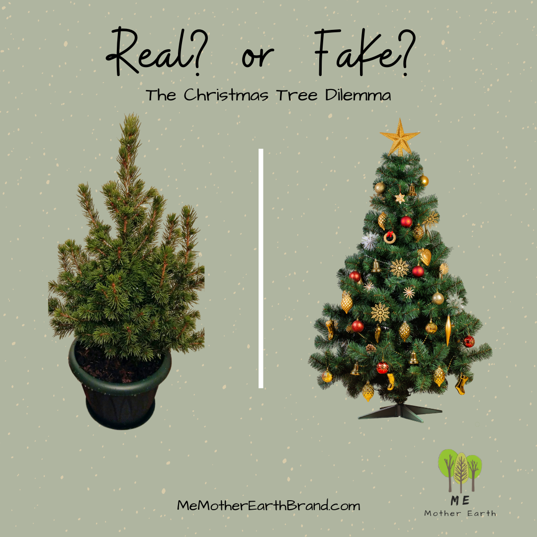 Real or Fake: The Christmas Tree Dilemma
