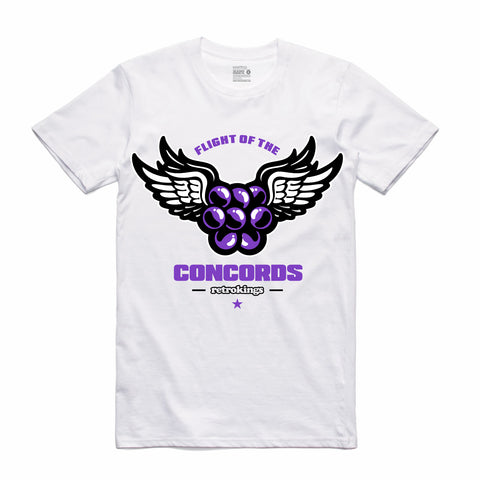 Retro Kings Clothing Flight of the Concord 11s Tee
