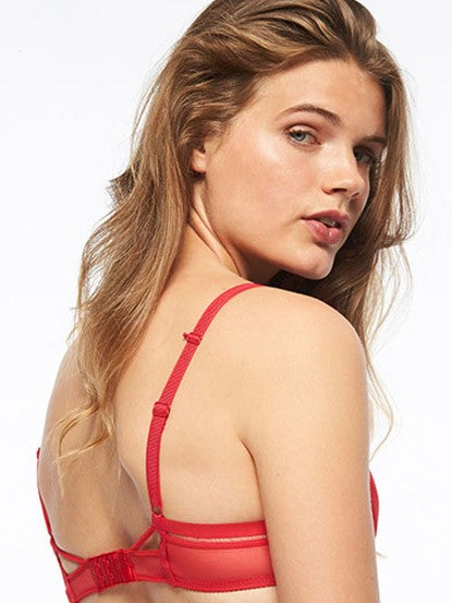 Passionata - Graphic Sheer Plunge Bra
