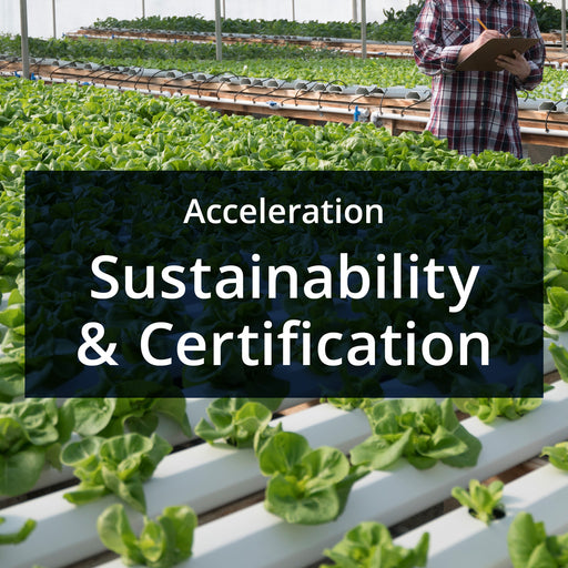 MarketReady Insights - Acceleration Package - Sustainability & Certifications