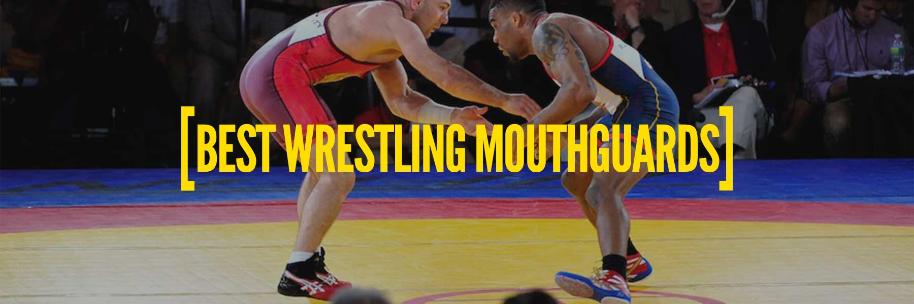 Best Mouthguard For Wrestling