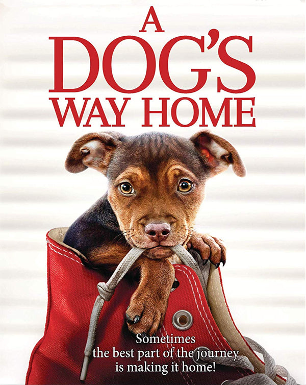 A Dog's Way Home (2019) [MA SD]