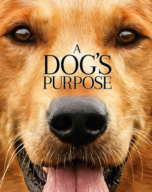 A Dog's Purpose (2017) [Ports to MA/Vudu] [iTunes HD]