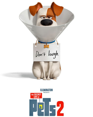 Secret Life Of Pets 2 (2019) [MA HD]