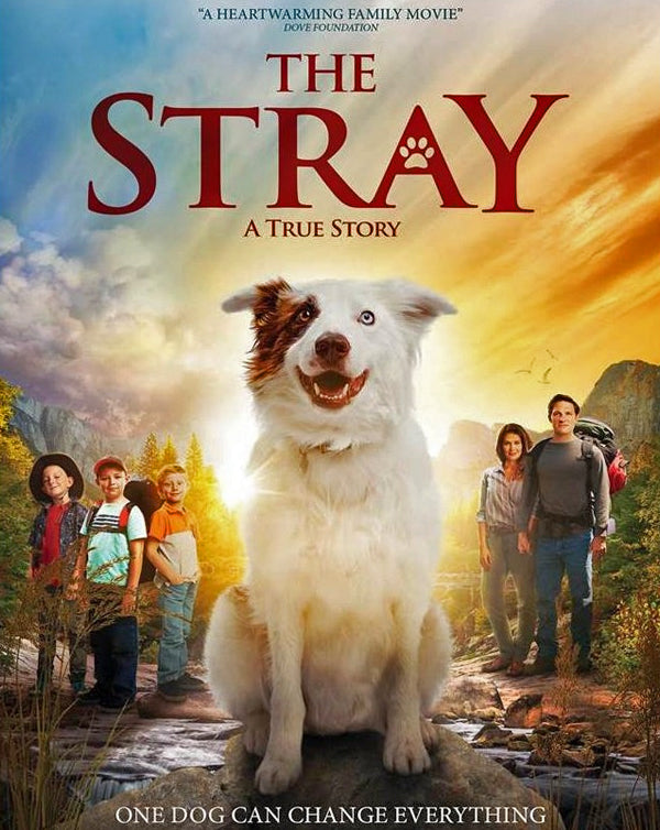 The Stray (2017) [MA HD]