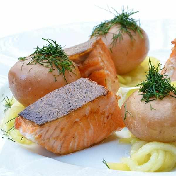 Salmon Plain-LDNutrition