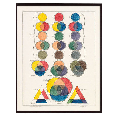 Color Theory Print