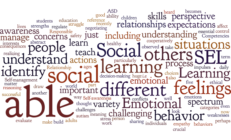 How Emotions Affect Learning Behaviors >> What Is Sel 15 Books And Activities That Really Help Aapc