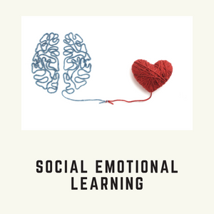 Social Emotional Learning Collection