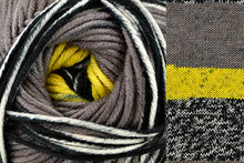Load image into Gallery viewer, Uptown Bulky Amplify - Yarn Hoppers