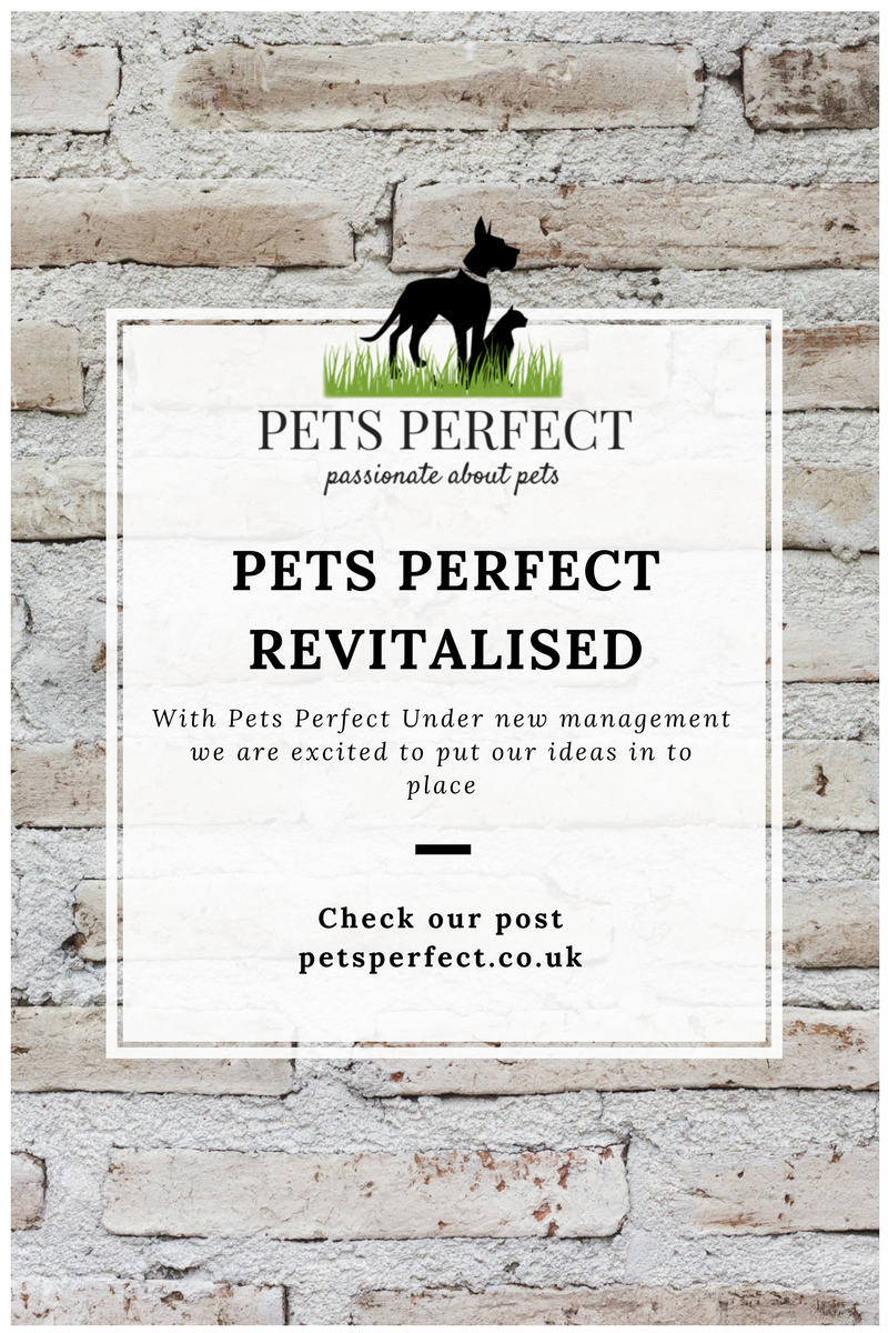 Pets Perfect Revitalised