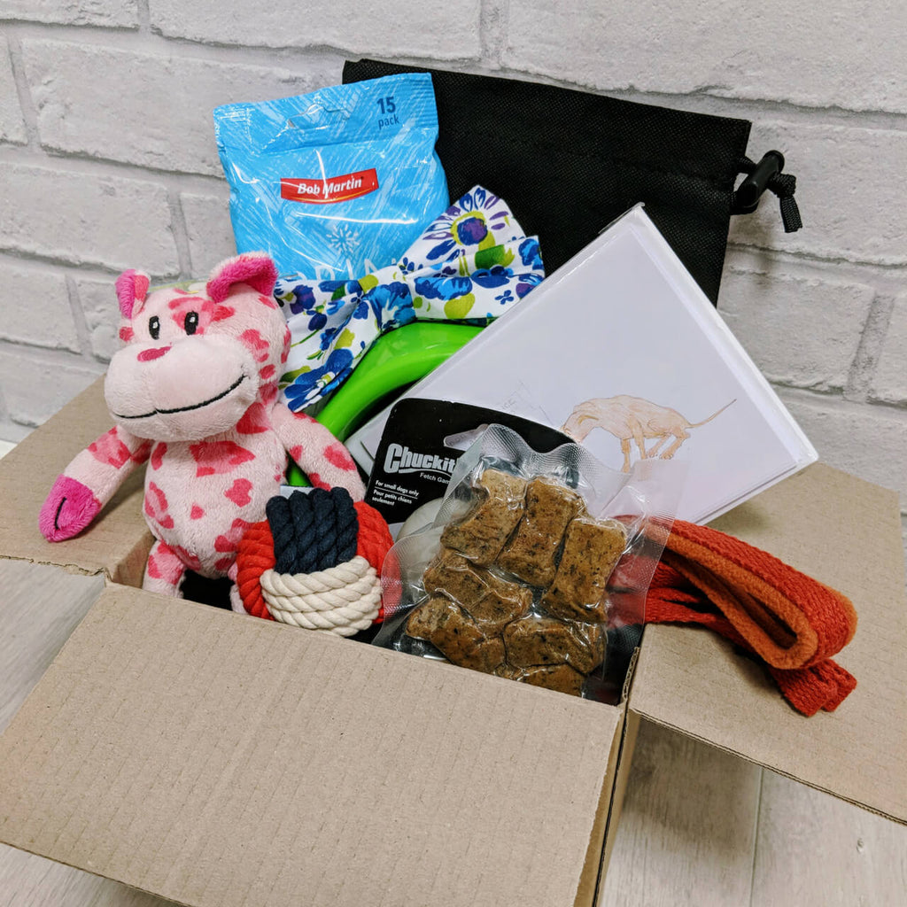 Free Starter Treat Box