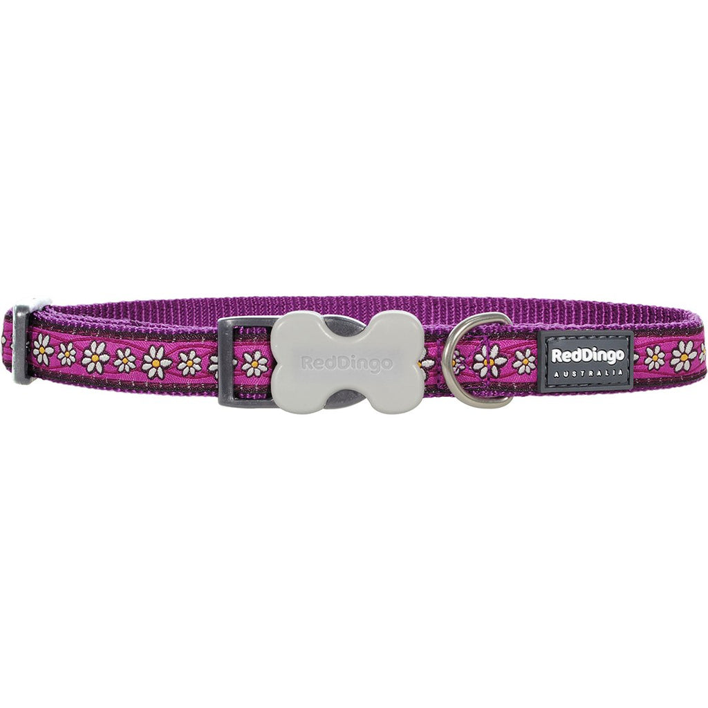 Purple Daisy Chain Red Dingo Dog Collar - Dog Collar
