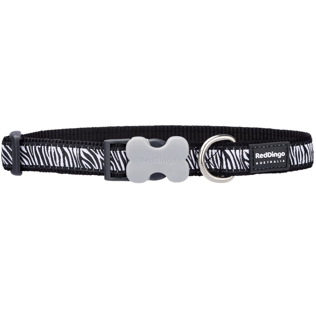 Black Zebra Red Dingo Dog Collar - Dog Collar