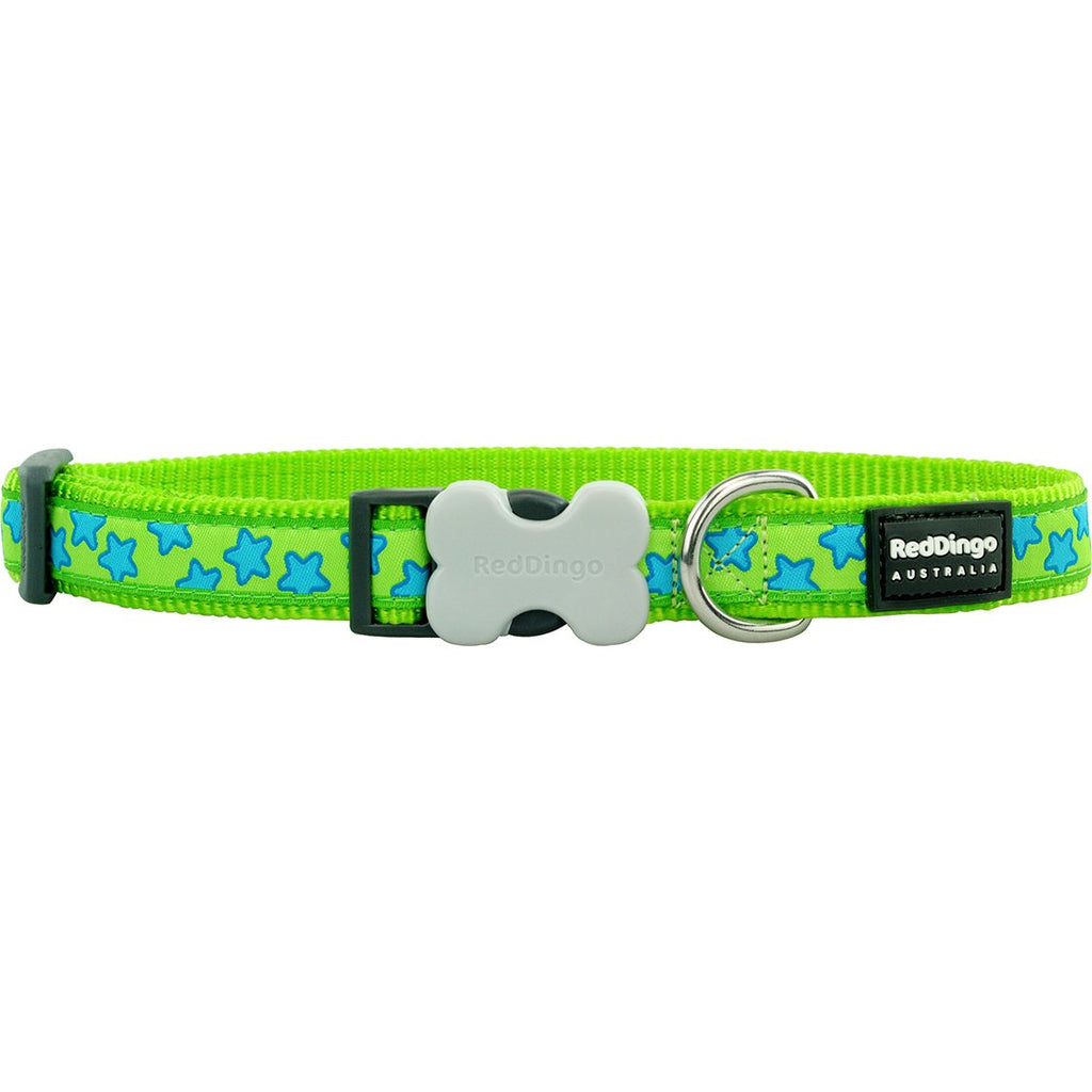 Lime Star Red Dingo Dog Collar - Dog Collar