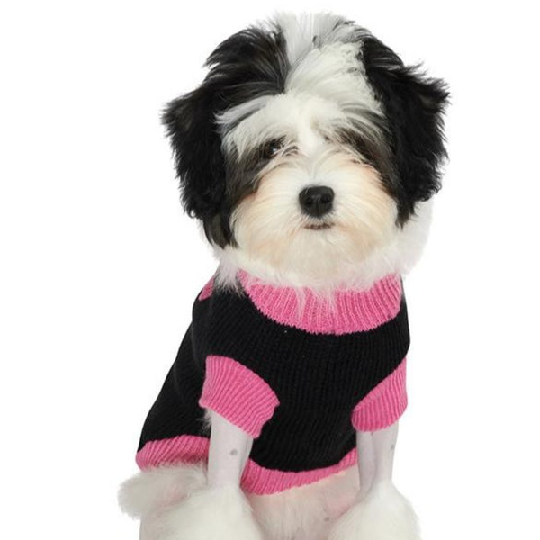 Black & Pink Mod Dog Sweater - Modelled by Dog
