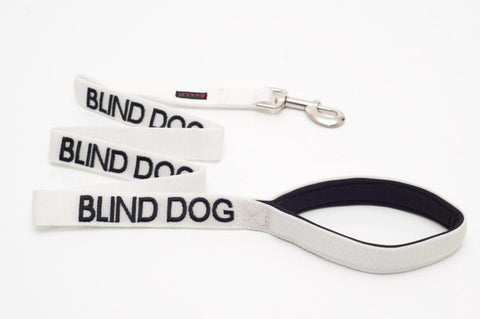 Blind Dog - Advisory Lead