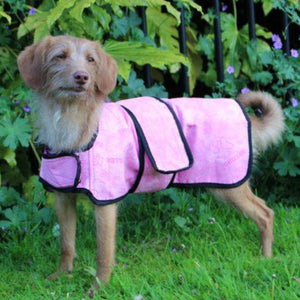 Chiller Chien Dog Cooling Coat – Pink