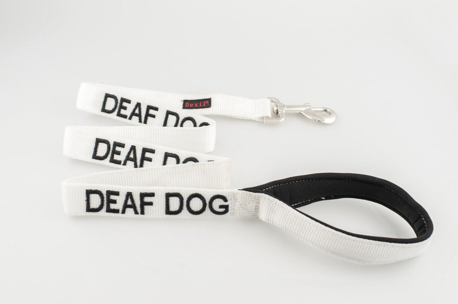 Deaf Dog - Advisory Lead
