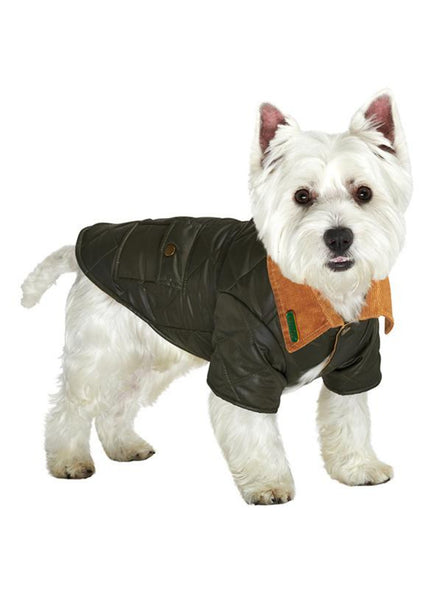 Forest Green Quilted Town & Country Dog Coat - Modelled by Dog