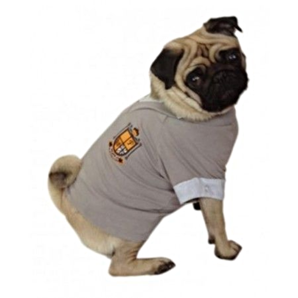 Grey Crest T-Shirt - (Priced to Clear) - Modelled by Dog