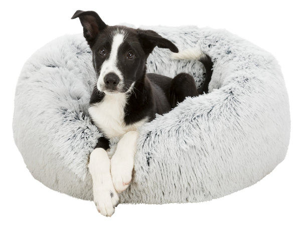 Harvey - Comfort Dog Bed