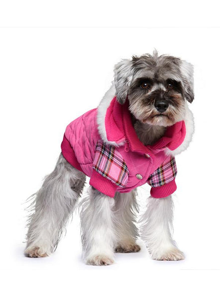 Highland Lady Quilted Tartan Dog Coat - Modelled by Dog