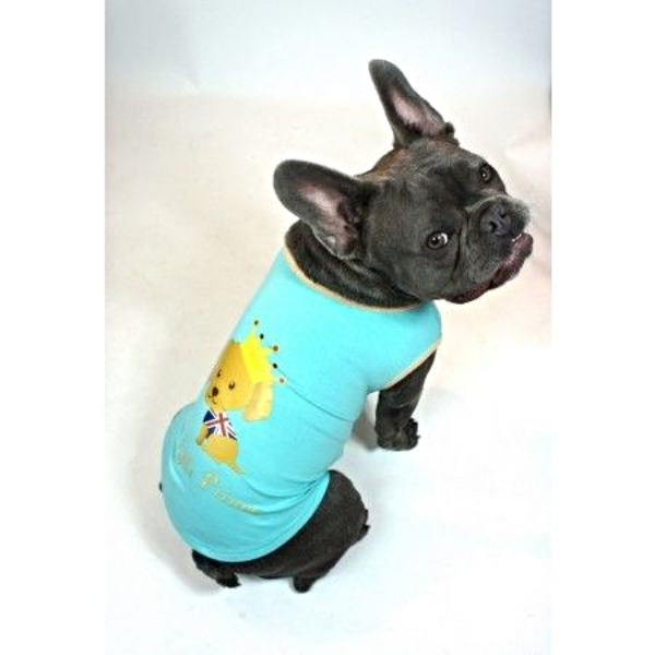 Little Prince T-Shirt - Blue (Priced to Clear) - Modelled by Dog