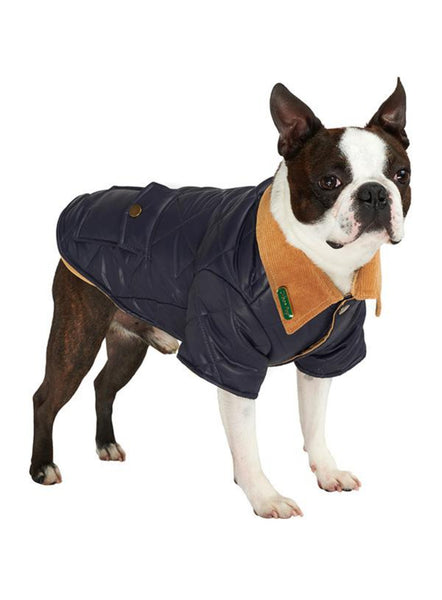 Navy Blue Quilted Town & Country Dog Coat - Modelled by Dog
