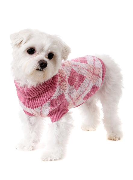 Pink Argyle Dog Sweater - Modelled by Dog 1