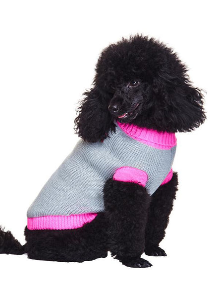 Pink Paw Dog Sweater - Modelled by Dog