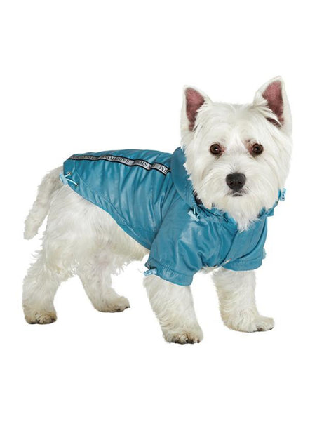 Teal Blue Rainstorm Waterproof Dog Coat - Modelled by Dog