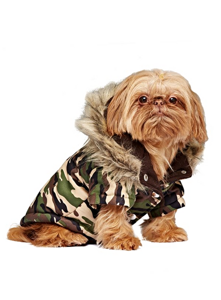 Fish Tail Parka Forest Camouflage - Modelled by Dog