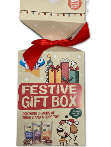 Festive Gift Box for Dogs