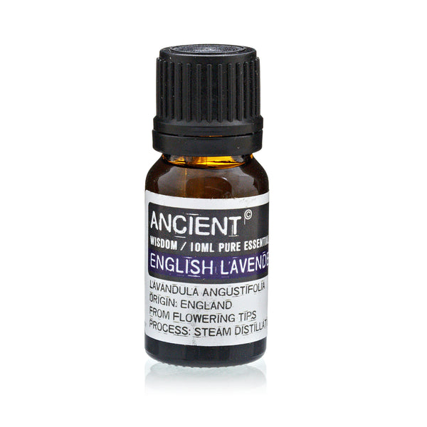 English Lavender Essential Oil
