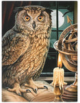 19X25CM THE ASTROLOGER OWL CANVAS PICTURE PLAQUE BY LISA PARKER