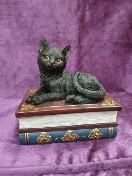Salems Spells Witches Familiar Black Cat and Spellbook Box 11.7cm