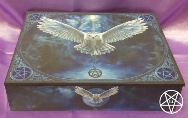 Jewellery Box - Awaken Your Magic - Owl Design by Anne Stokes 25cm