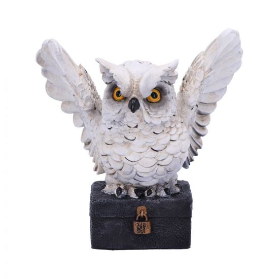 Archimedes White Horned Owl Perched on a Locked Box Figurine 12.5cm