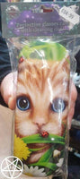 Summer Cat Design Glasses Case by Linda Jones