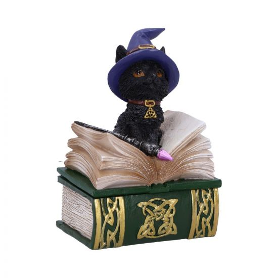 Binx Small Witches Familiar Black Cat and Spell Book Figurine Box 11cm