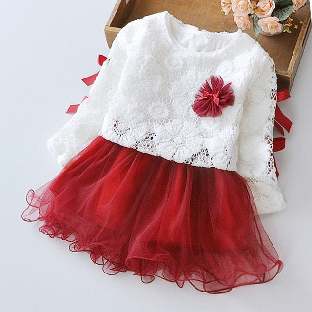 Baby Clothing Lace flower girls dress  princess dresses 2pcs
