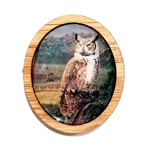 Sonia Brit Resin brooch - Owl