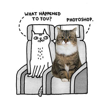 Load image into Gallery viewer, Photoshop Cat card