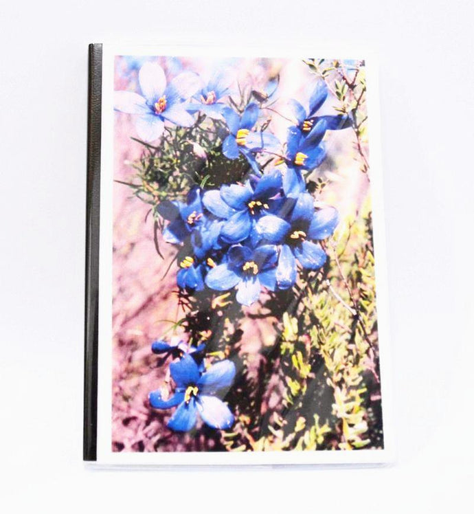 Gail Tavener journal - Finger Flowers