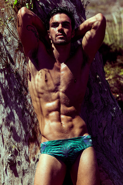 Palm Leaf Print Swim Brief